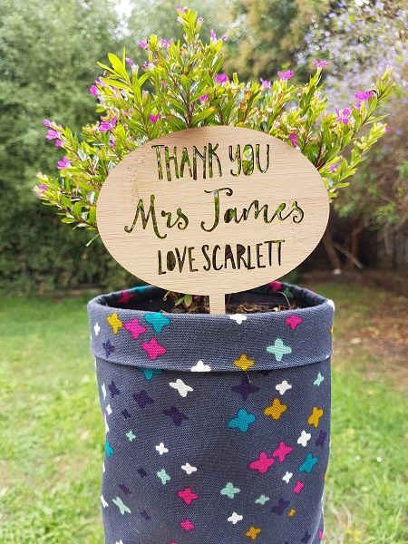 Personalised Thank you Teacher Gift Plant Stake